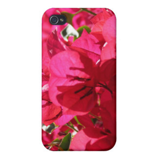 Bougainvillea Cover For iPhone 4