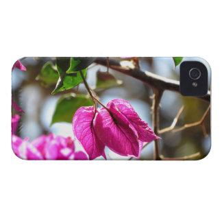 Bougainvillea Leaves iPhone 4 Case