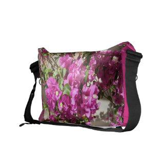 Bougainvillea Purple flowering plant bag