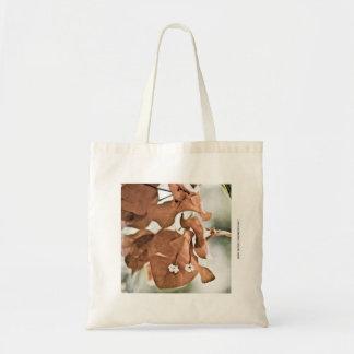Bougainvillea rojo bolsa