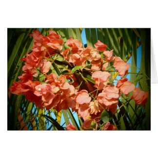 Bougainvillea tropical flower Hawaii greeting card
