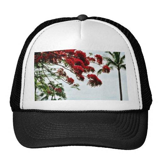 Bouganvillea Tree - Kauai Mesh Hats