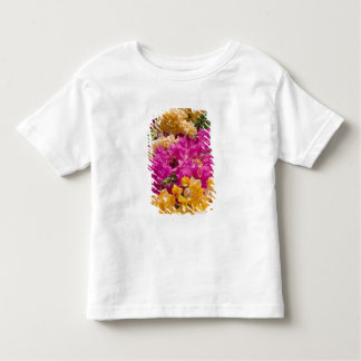 Bouganvilleau, Cayman Brac, Cayman Islands, Toddler T-shirt