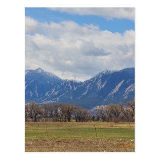 Boulder Colorado Prairie Dog View Postcard