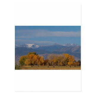 Boulder County Colorado Continental Divide Autumn Postcard