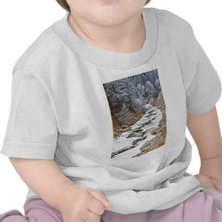 Boulder Creek Frosted Snowy Portrait View Tshirts