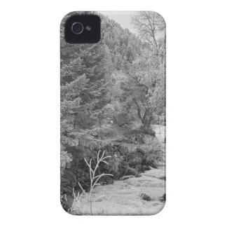 Boulder Creek Winter Wonderland Black and White iPhone 4 Case