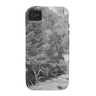 Boulder Creek Winter Wonderland Black and White iPhone 4/4S Covers