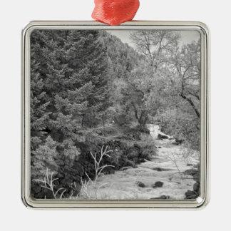 Boulder Creek Winter Wonderland Black and White Christmas Tree Ornaments