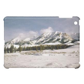 Boulder Mountain View iPad Mini Covers