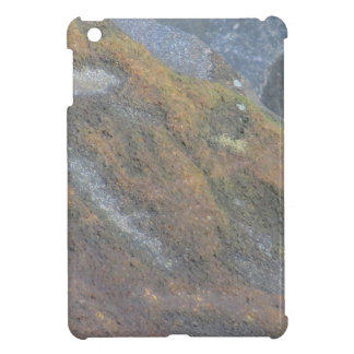 Boulder Surface Texture iPad Mini Cases