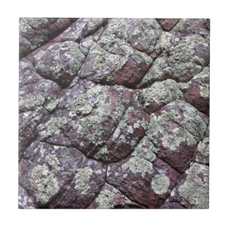 Bouldered Rocks with Lichen Moss Ceramic Tile