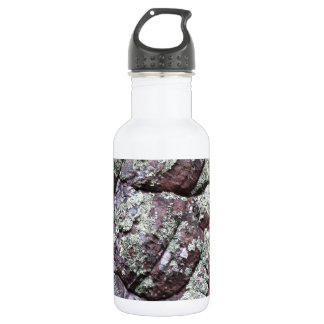 Bouldered Rocks with Lichen Moss Stainless Steel Water Bottle