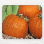 Bountiful Fall Harvest Orange Pumpkins and Corn Mouse Pad
