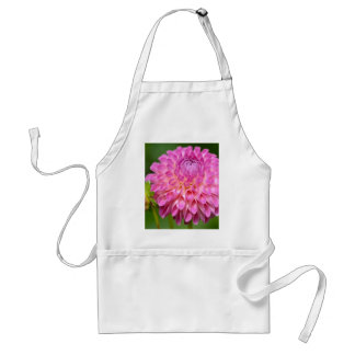 Bountiful Pink Dahlia and Bud Poster Adult Apron