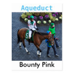 Bounty Pink by Speighstown Postcard