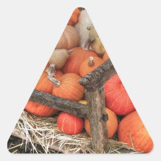 Bounty Pumpkins Triangle Sticker