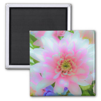 Bouquet in Blue and Pink - enhanced Chrysanthemum Magnet