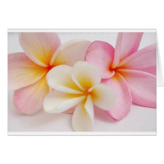 bouquet of frangipanis card