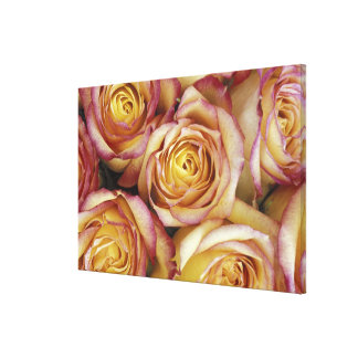 Bouquet of roses gallery wrap canvas