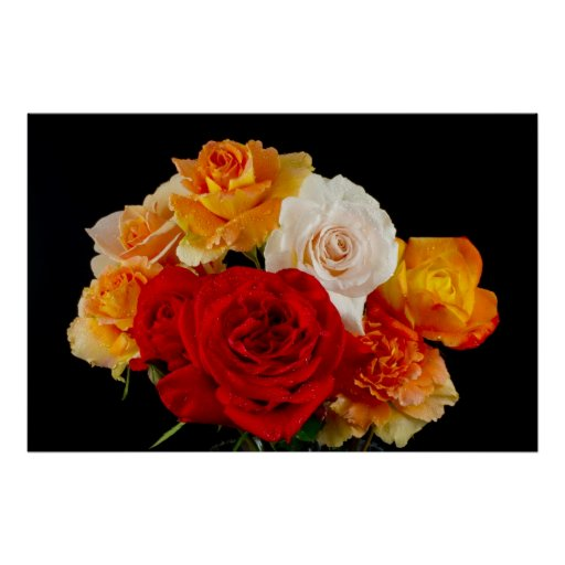 Bouquet of Roses on Black Posters