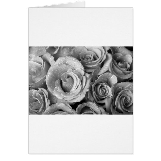 Bouquet of Roses with Water Drops in Black and Whi Card