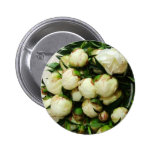 Bouquet of White Peony Buds Button