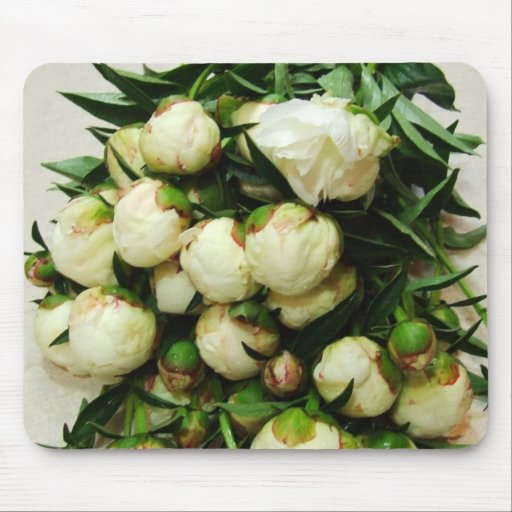 Bouquet of White Peony Buds Mousepad