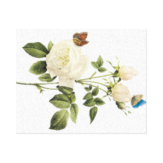 Bouquet of White Roses with Butterflies Canvas
