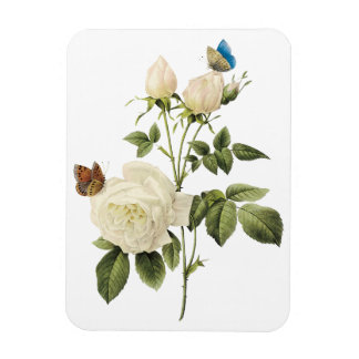 Bouquet of White Roses with Butterflies Magnet