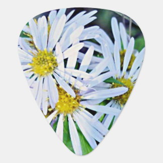 Bouquet of Wild White and Yellow Daisies Guitar Pick