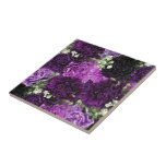"""Bouquet Purple Carnations Ceramic Tile<br><div class=""""desc"""">Deluxephotos features bouquet of purple carnations photo ceramic tile. Great for anyone or any occasion. Available in other colors, sizes and/or styles. Be Smart Save Money Shop Online on my Deluxephotos* Zazzle Store. **IMAGE ARTWORK/PHOTO COPYRIGHTS** This image artwork and/or photo belongs to me (Rockin Docks deluxephotos division of deluxecontractorforms.com) and...</div>"""