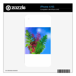 Bouquet with ferns decal for iPhone 4
