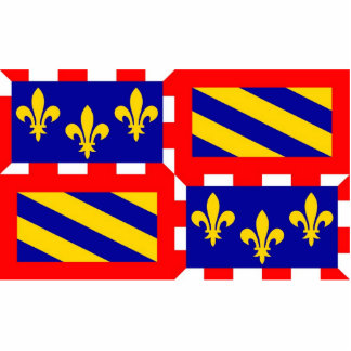 Bourgogne french region flag france country cutout