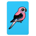 Bourke's Parakeet Rectangle Magnets