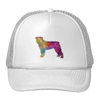 Bouvier DES Flanders in watercolor Trucker Hat