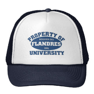 Bouvier Des Flanders University Trucker Hat