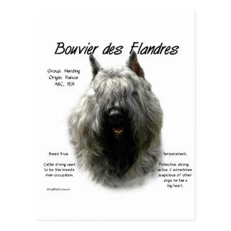 Bouvier des Flandres History Design Postcards