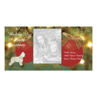 Bouvier des Flandres, Merry Christmas Card