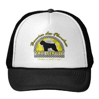 Bouvier des Flandres Taxi Service Trucker Hat
