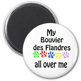 Bouvier des Flandres Walks Design 2 Inch Round Magnet