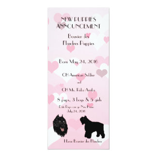 Bouvier des Flandres with Pink and white Hearts Card