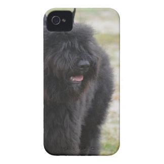 Bouviers des Flanders iPhone 4 Case-Mate Cases