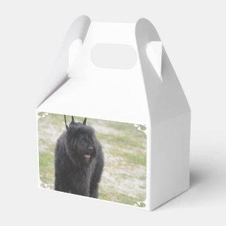 Bouviers des Flanders Favor Box