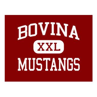 Bovina - Mustangs - High School - Bovina Texas Postcard