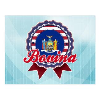 Bovina, NY Postcard