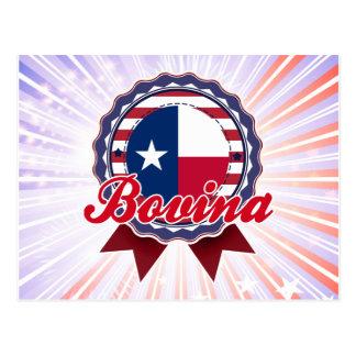 Bovina, TX Postcard