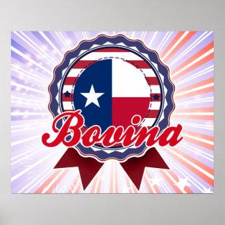 Bovina TX Posters