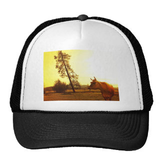 Bovine Beauty Trucker Hat