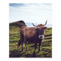 Bovine Cow on Beautiful Landscape Flyer